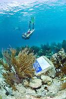 Katy Day snorkeling<br /> The underwater trail <br /> Trunk Bay<br /> Virgin Islands National Park<br /> St. John, U.S. Virgin Islands