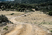8th June 2017, Alghero, West Coast of Sardinia, Italty; WRC Rally of Sardina,  A look at the gravel style course layout