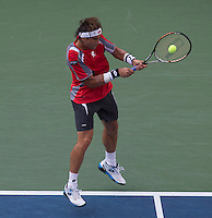 David Ferrer..Tennis - US Open - Grand Slam -  New York 2012 -  Flushing Meadows - New York - USA - Saturday 8th September  2012. .© AMN Images, 30, Cleveland Street, London, W1T 4JD.Tel - +44 20 7907 6387.mfrey@advantagemedianet.com.www.amnimages.photoshelter.com.www.advantagemedianet.com.www.tennishead.net