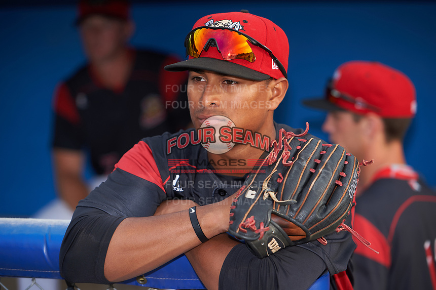Batavia Muckdogs right fielder Jhonny Santos (13) in the dugout before a game against the Auburn Doubledays on July 6, 2017 at Dwyer Stadium in Batavia, New York.  Auburn defeated Batavia 4-3.  (Mike Janes/Four Seam Images)