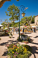 Plants for sale in the Place de la Republique in village of Seillans during the Flower Festival, Var, Provence, France.