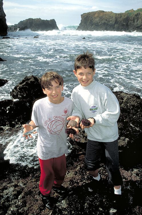 Children with sea shells in tide pools along the Mendocino Coast