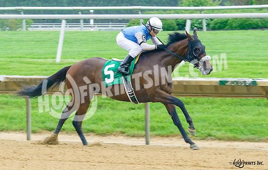 Racetrack Romance winning at Delaware Park on 5/21/16