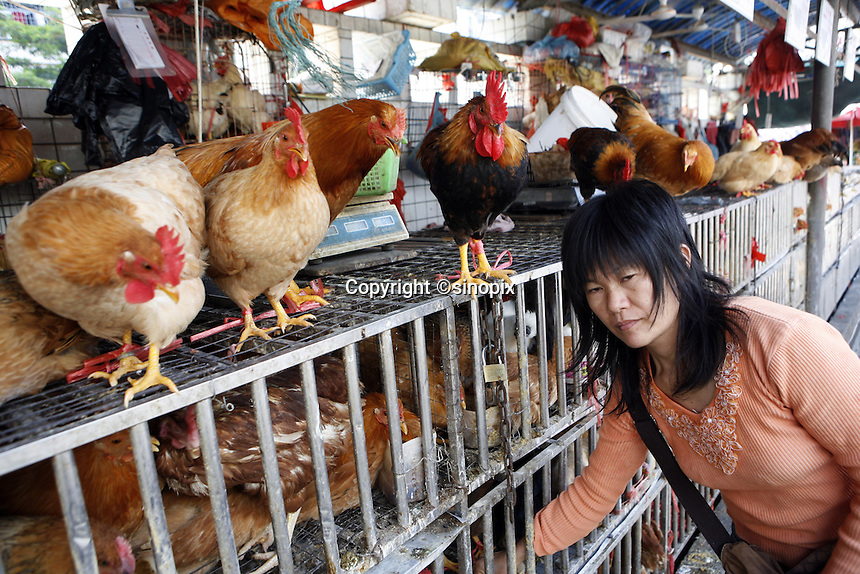 A woman feeds chickens in the Futian agriculture and produce market.<br /> 08 February, 2007.<br /> Shenzhen, China