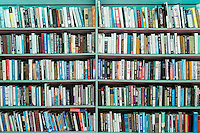 Books on a shelf.
