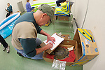 Volunteer Writing Notes Regarding Green Turtle In Banana Box