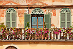 Windows of a building on Piazza Erbe