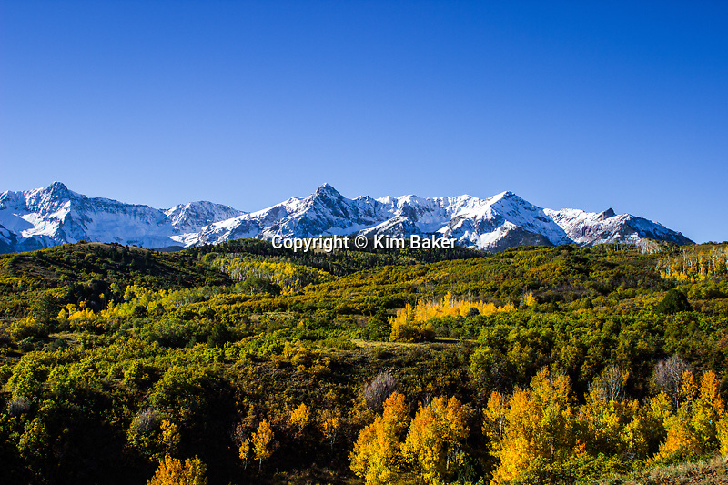 Telluride, CO Fall Colors