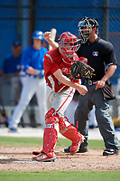 Philadelphia Phillies catcher Henri Lartigue (22) during an Instructional League game against the Toronto Blue Jays on October 7, 2017 at the Englebert Complex in Dunedin, Florida.  (Mike Janes/Four Seam Images)