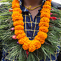 Nepal - Kathmandu - A worker stand in line at the airport with a flower crown around his neck, most of them go to the temple for the blessings before the departure. According to UN figures, 7,2 million Nepalis work abroad (4 millions of them in India). Half of them are undocumented, 1700 migrant workers leave Nepal every day, 2/3 dead bodies arrive at Kathmandu airport every day. According to the World Bank, in 2013 Nepal received more than 5 billion USD in remittances from abroad. This constitutes 24.7 percent of the GDP, the third highest percentage in the world after Tajikistan and Kyrgyzstan. A third of all Nepali households, and 35% of rural households, have at least one member working and living abroad. 24.8 percent of Nepalis still live under the poverty line. Nepali GDP per capita (PPP) stands at 1,102 USD, the twentieth lowest in the world. Since 1971, Nepal has been classified as one of the 48 least developed countries by the UN.