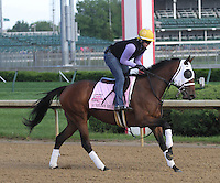 May 1, 2014: Aurelia's Belle gallops in preparation for the Kentucky Oaks at Churchill Downs in Louisville, KY. Zoe Metz/ESW/CSM