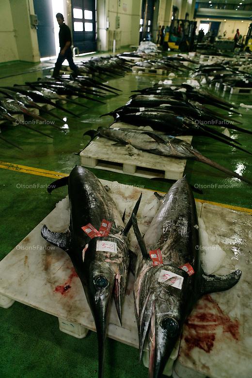 .Vigo has the largest biomass fish shipping port in the world and it is the home of the first fish auction area...Port Contacts:..Rocio Fernandez Gil.PR Port of Vigo.Has decent English.www.apvigo.com.986 268 000.direct number is: 986 22 06 86.Plaza de la Estrella, Number 1.36201 Vigo.Pontevedra..Her boss (he was on vacation).Piler Perez (Public Relations)..