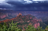 749220300 a violent monsoon summer thunderstorm forms up over the canyon and monoliths along the road to cape royal on the north rim of grand canyon national park in northern arizona