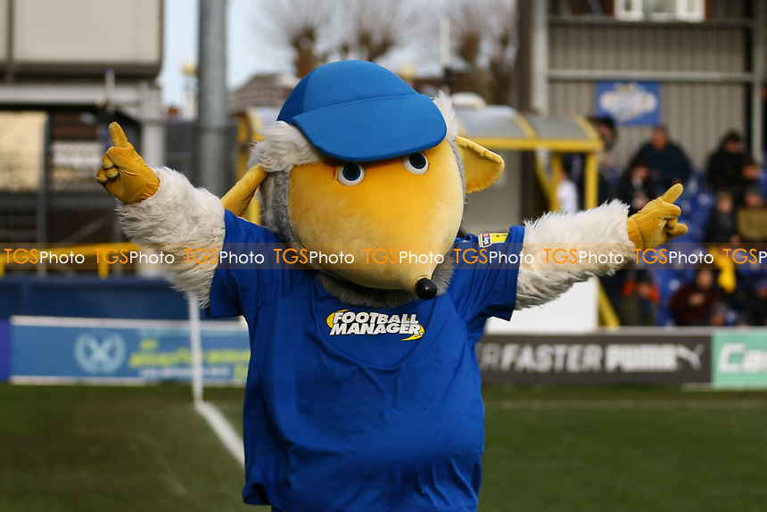 AFC Wimbledon mascot Haydon in action during AFC Wimbledon vs Burton Albion, Sky Bet EFL League 1 Football at the Cherry Red Records Stadium on 9th February 2019