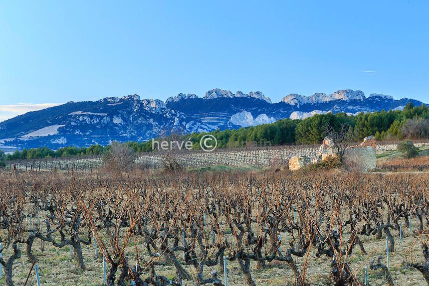France, Vaucluse (84), Saint-Hippolyte-le-Graveyron, le vignoble Ventoux A.O.C. en hiver et les Dentelles de Montmirail au loin