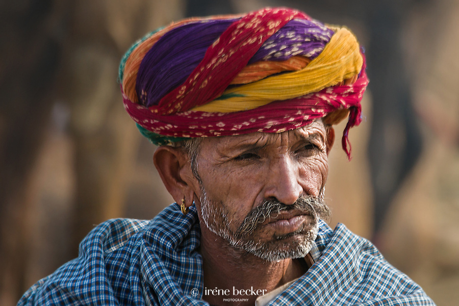A camel trader waits for customers. Pushkar Camel Fair, Rajasthan, India.