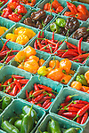 Farmers Market, Village Green, Madison, CT. Pepper varieties.
