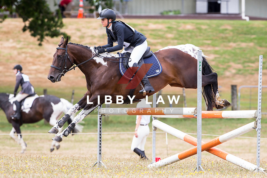 NZL-Zoe Ander (PRINCESS REBECCA) 5TH-1A NZPC 105: 2015 NZL-Hunua Pony Club ODE (Saturday 31 January) CREDIT: Libby Law COPYRIGHT: LIBBY LAW PHOTOGRAPHY