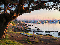 Monterey Harbor and Marina, and table with sunrise. Monterey, California