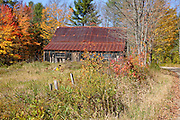 Autumn foliage along Bog Road in Campton, New Hampshire.