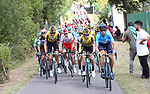 Movistar Team and Team Jumbo-Visma on the front of the peloton during Stage 12 of La Vuelta 2019 running 171.4km from Circuito de Navarra to Bilbao, Spain. 5th September 2019.<br /> Picture: Luis Angel Gomez/Photogomezsport | Cyclefile<br /> <br /> All photos usage must carry mandatory copyright credit (© Cyclefile | Luis Angel Gomez/Photogomezsport)