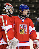 Filip Novotny (Czech Republic - 1), Antonin Honejsek  (Czech Republic - 7) - Sweden defeated the Czech Republic 4-2 at the Urban Plains Center in Fargo, North Dakota, on Saturday, April 18, 2009, in their final match of the 2009 World Under 18 Championship.