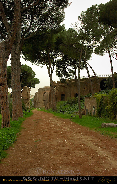 Domus Severiana Ruins Support Structures for Palace of Septimius Severus Palatine Hill Rome