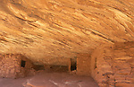 Part of Mule Creek Canyon Ruins on Cedar Mesa, Utah, USA. This ruin is called House of Fire because of the rock patterns and color in the sandstone ceiling.