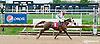 Alphaa winning at Delaware Park on 10/9/13
