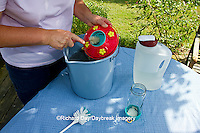 01162-12802 Woman cleaning hummingbird feeder, Marion County, IL