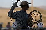 Silhouette of a cowboy as he swings his lasso at Minden Ranch Rodeo, Douglas County Fairgrounds in Gardnerville, Nevada.