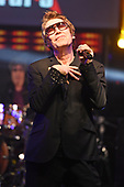 PSYCHEDELIC FURS (2017)