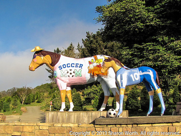 Lemo's Horse and youngster sporting soccer outfits for Mother's Day.