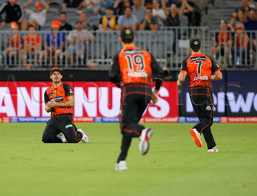 3rd February 2019, Optus Stadium, Perth, Australia; Australian Big Bash Cricket League, Perth Scorchers versus Melbourne Stars; Mitch Marsh of the Perth Scorchers takes the catch to dismiss Peter Handscomb of the Melbourne Stars for 2