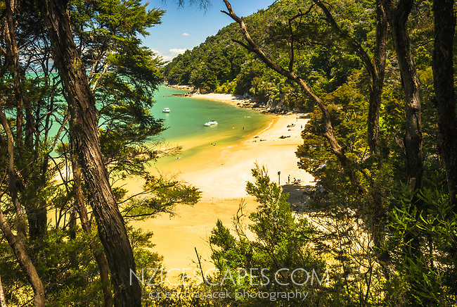 Stilwell Bay on Abel Tasman Coastal Track, Abel Tasman National Park, Nelson Region, New Zealand