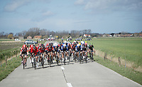 The typical Moeren sight: a peloton cut in echelons as the wind plays a pivotal role in almost every Gent-Wevelgem and as ever; the big favourites are rolling in the first bunch.<br /> <br /> 78th Gent - Wevelgem in Flanders Fields (1.UWT)