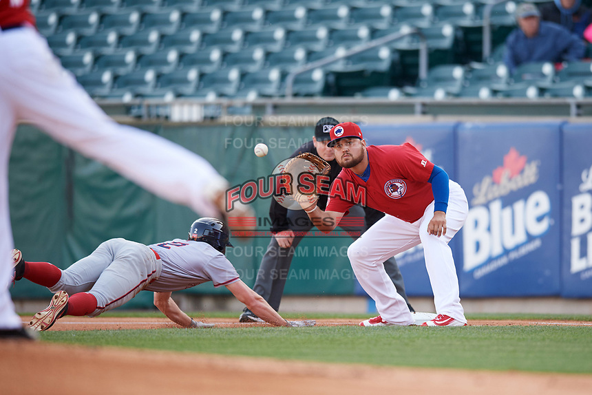 Buffalo Bisons first baseman Rowdy Tellez (21) waits for a throw as Andrew Stevenson (2) dives back to first on a pickoff attempt with umpire Sean Barber looking on during a game against the Syracuse Chiefs on May 18, 2017 at Coca-Cola Field in Buffalo, New York.  Buffalo defeated Syracuse 4-3.  (Mike Janes/Four Seam Images)
