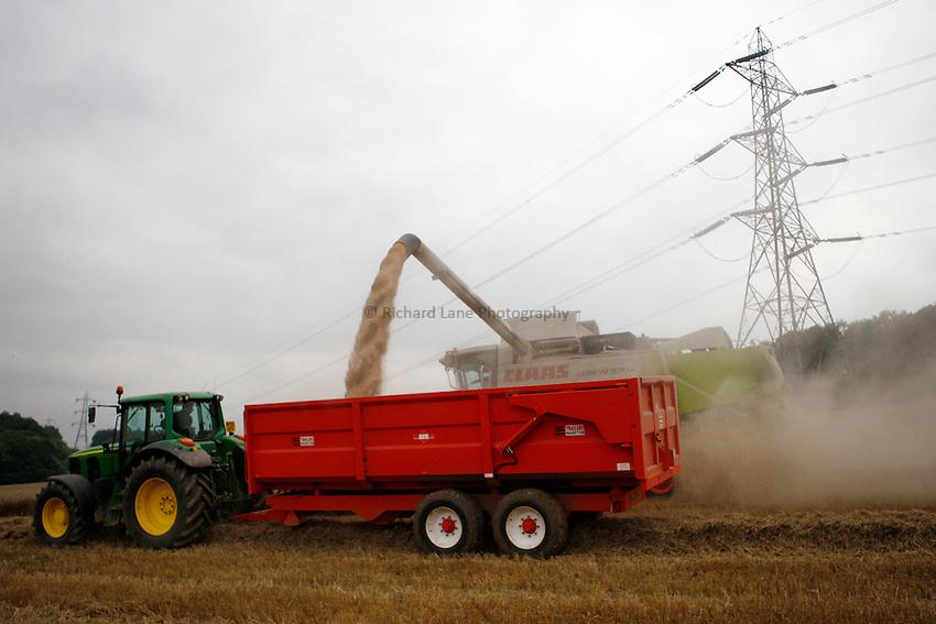 Photo: Richard Lane/Richard Lane Photography. Grain harvest near Little Missenden, Buckinghamshire. A Class combine harvester cutting winter wheat unloads into a tractor and trailer. 16/09/2008.