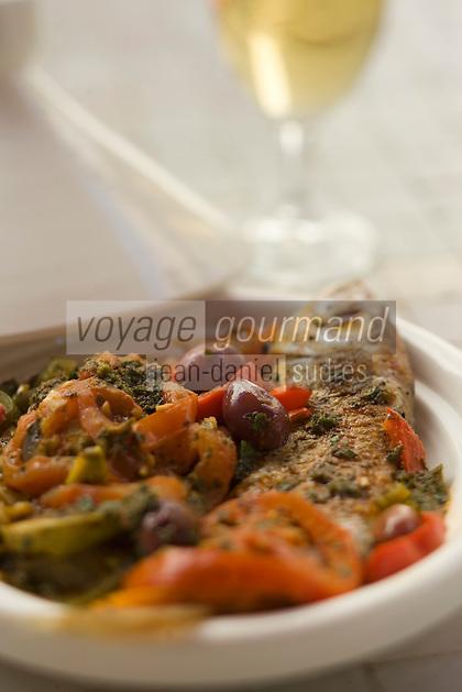 Afrique/Afrique du Nord/Maroc/Rabat: Hotel - Maison d'Hote Villa Mandarine - Pageot à la chermoula