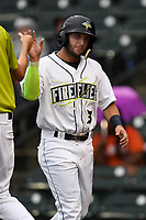 Michael Paez (3) of the Columbia Fireflies on the South team is greeted after scoring a run at the South Atlantic League All-Star Game on Tuesday, June 20, 2017, at Spirit Communications Park in Columbia, South Carolina. The game was suspended due to rain after seven innings tied, 3-3. (Tom Priddy/Four Seam Images)