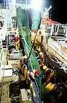Remontée de chalut à bord du Jack Abry II. Le poisson est transféré dans une cale et le filet, une fois réparé, sera remit à l'eau aussitôt.