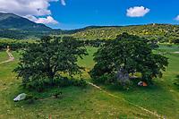 Bosque de encinos AEREAS, Sierra Los locos