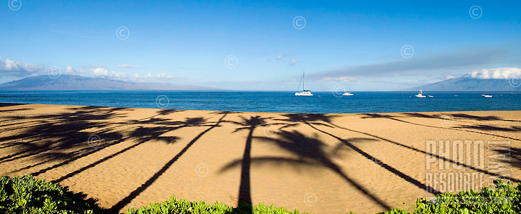 Morning on Ka'anapali Beach with palm tree shadows in the sand, Maui, Hawaii.
