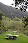 Rancho Del Oso, Big Basin S.P., CA.  Winter edit.  Frank Balthis