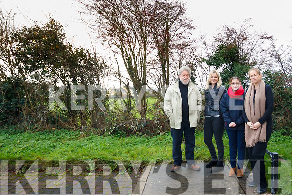 Concerned residents in Causeway Cluin na aAisling estate: L to R: Frank Royle, Antoinette Legg, Deidre Yallop and Amy Goggin.