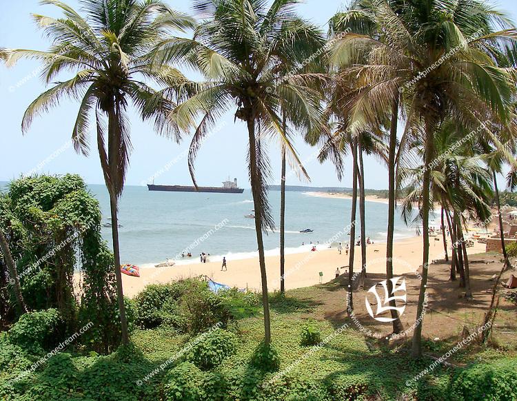 Palm trees and tourists at Goa beach