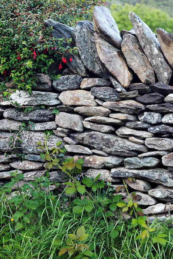 Detail of dry stone wall, Republic of Ireland
