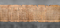 "Ancient Egyptian Book of the Dead papyrus - Spell 81a assuming the form of a lotus associated with the sun god, Iufankh's Book of the Dead, Ptolemaic period (332-30BC).Turin Egyptian Museum. Grey Background<br /> <br /> The spell reads "" I am a pure lotus that has ascended by the Sinlight and ia at Ra's nose. I spend my time shedding it on Horus. I am the pure lotus that ascended from the field"". <br /> <br /> The translation of  Iuefankh's Book of the Dead papyrus by Richard Lepsius marked a truning point in the studies of ancient Egyptian funereal studies."