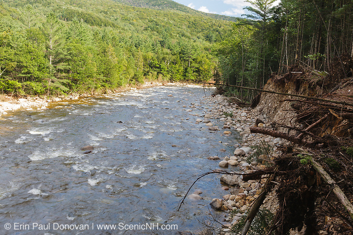 Riverbank erosion along the East Branch of the Pemigewasset River in Lincoln, New Hampshire from Tropical Storm Irene in 2011. This tropical storm caused destruction along the East Coast of the United States and the White Mountain National Forest of New Hampshire was officially closed during the storm.