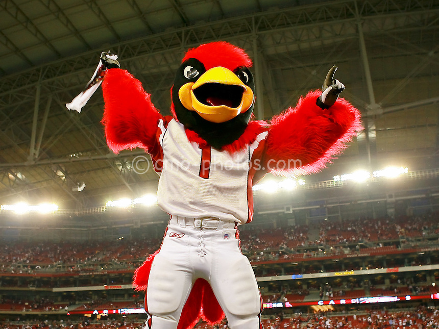 Jan 03, 2009; Glendale, AZ, USA; The Arizona Cardinals Mascot, Big Red, celebrates after the NFC Wild Card Playoff Game against the Atlanta Falcons at University of Phoenix Stadium.  The Cardinals won the game 30-24.